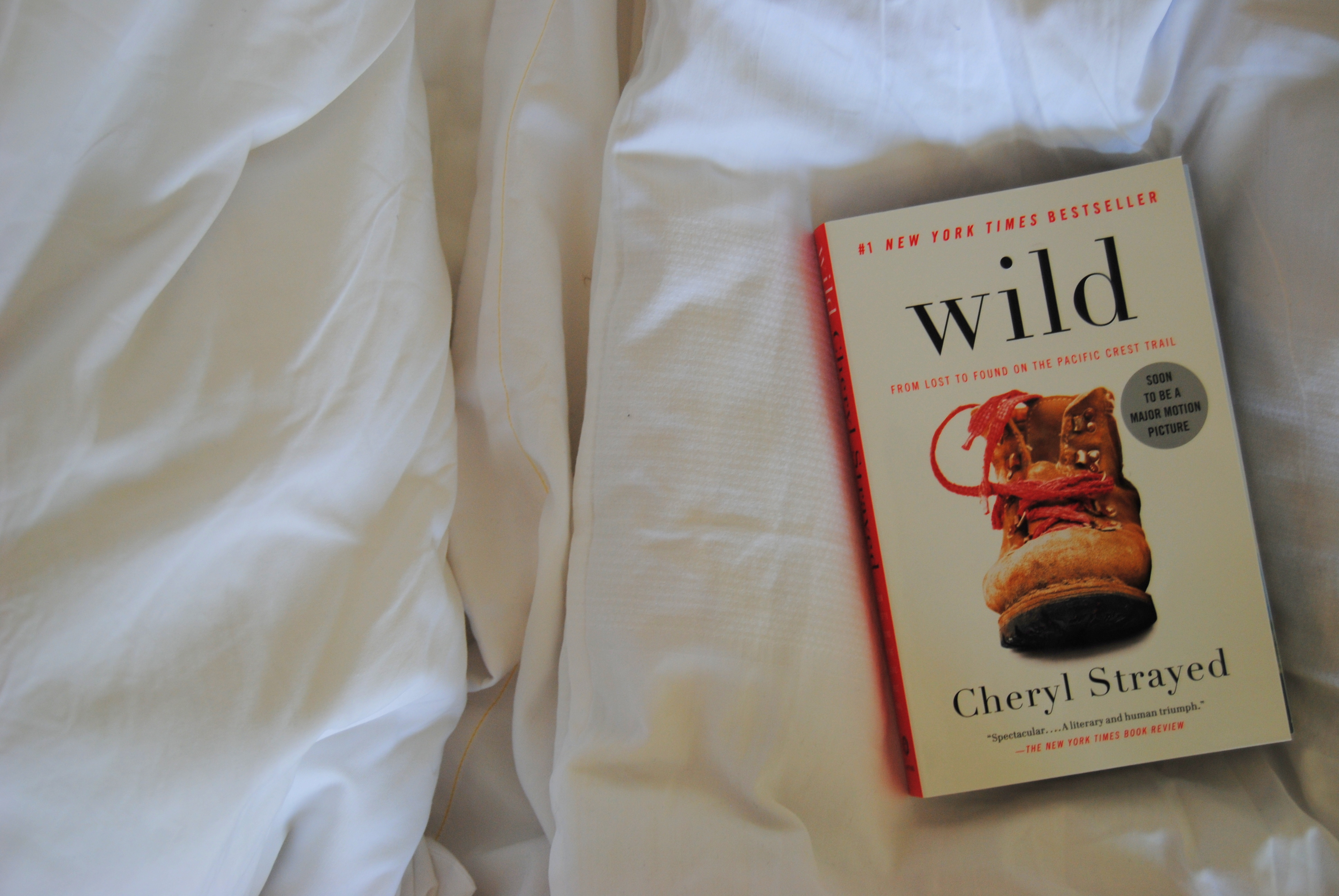 wild by cheryl strayed essay Reese witherspoon, wild, 2014 photo: anne marie fox/courtesy of fox searchlight midway on her life's journey, cheryl strayed found herself in.