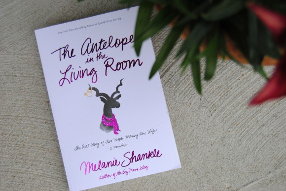 The Antelope in the Living Room by Melanie Shankle
