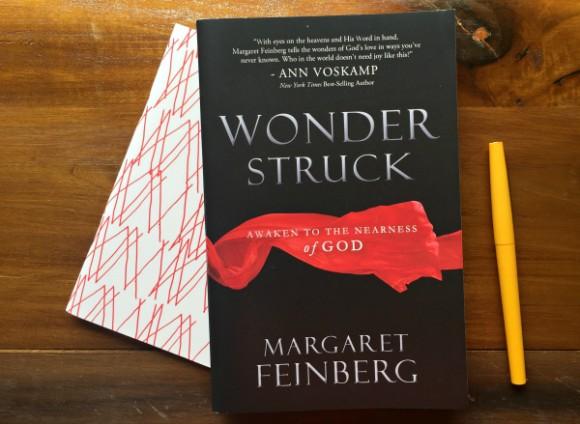 Wonderstruck by Margaret Feinberg
