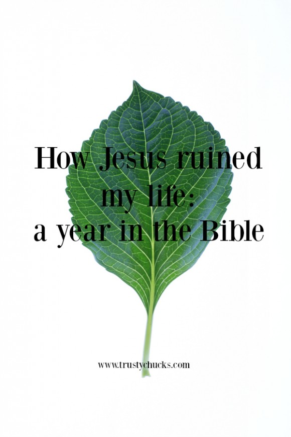 how jesus ruined my life a year in the Bible