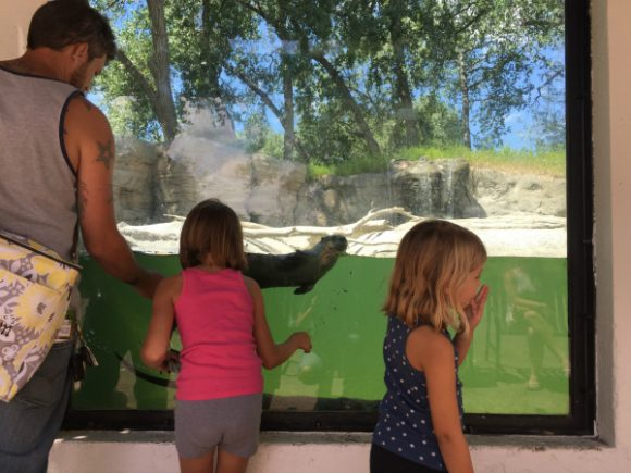 Hardin Montana zoo